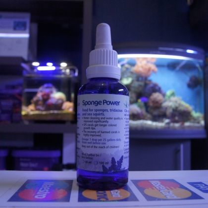 Sponge Power 50ml (Dobra Cena Bez Rabatu)